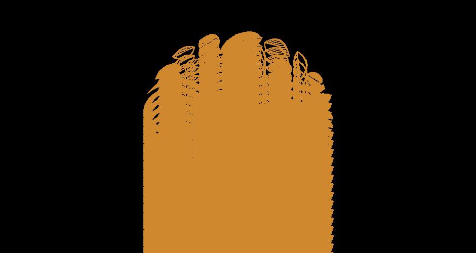 PlenTea